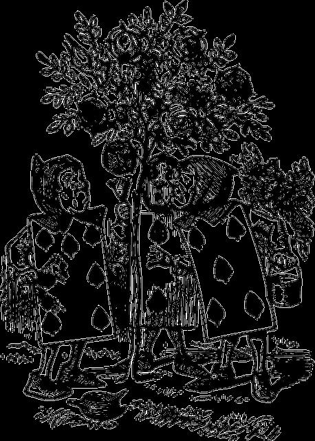 أمباغليفلوزين