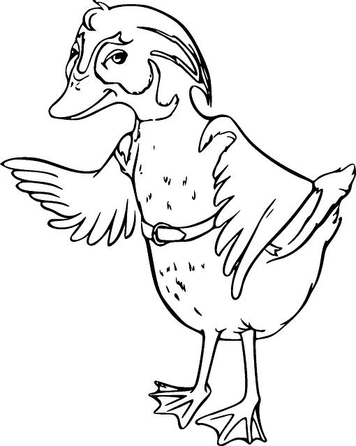 طريقة شوي الدجاج بالشواية الكهربائية
