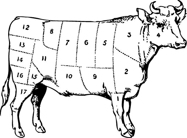 طريقة طهي لحم النعام