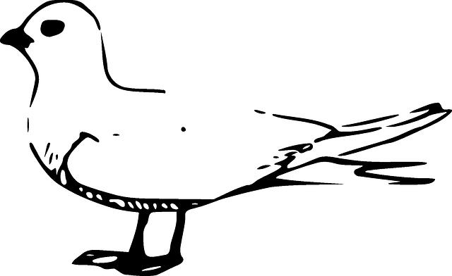 طريقة شوي البط