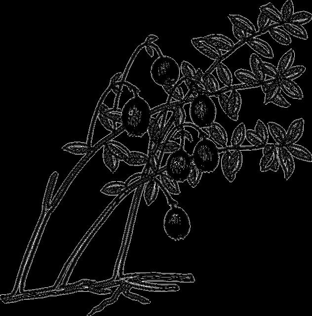 محضر الجلسة الثالثة بوزارة الخارجية البريطانية بين وزير الخارجية والوفد المصري برئاسة النحاس باشا