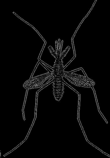 عائلة الزرازير أو الفصيلة الزرزورية