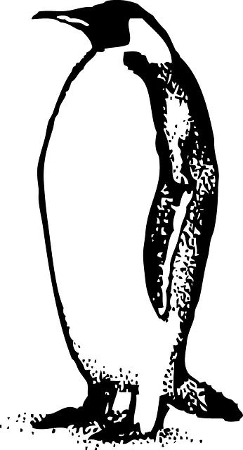 C15H18N2
